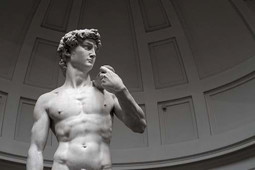 Entire statue David Michelangelo
