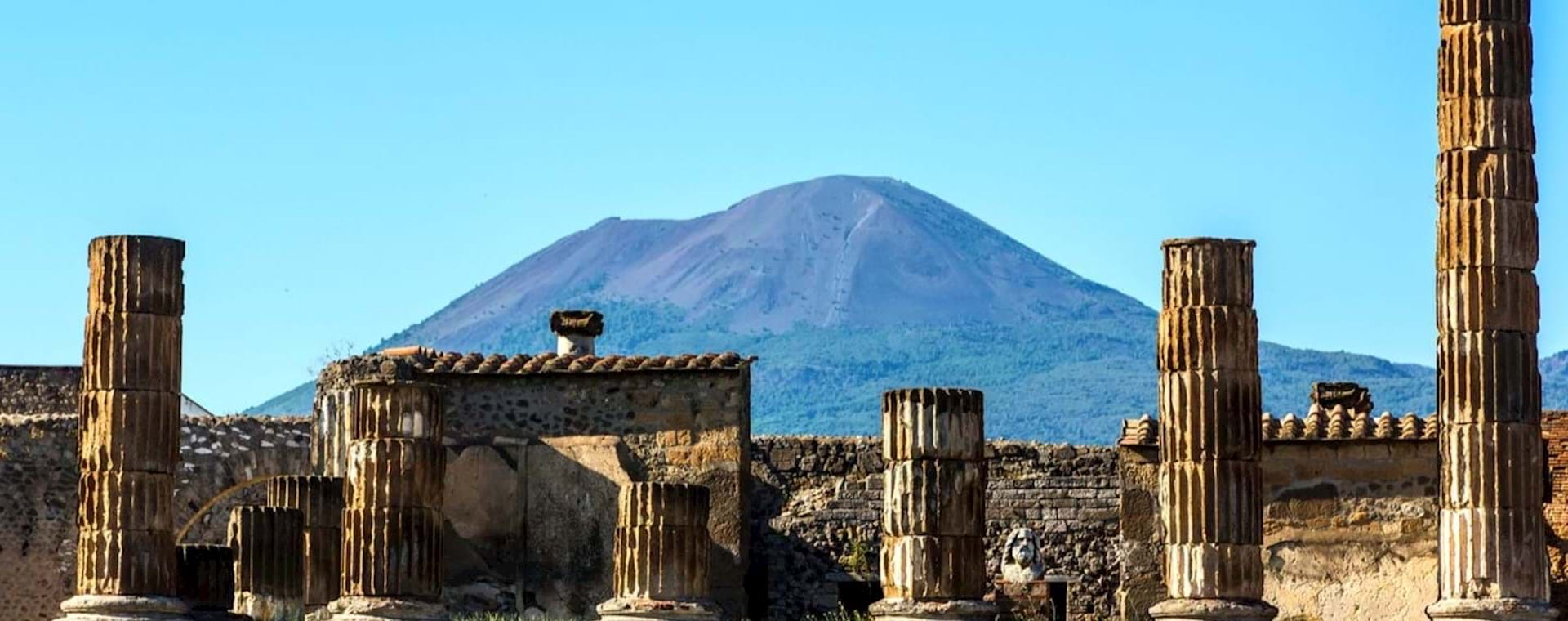 Pompeii and Vesuvius Tour from Naples with Lunch and Wine Tasting