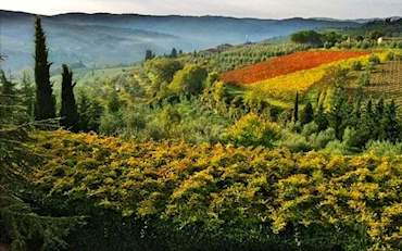 Typical Tuscany Landscape on the early morning